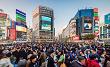 東京都の情報誌から「23区内の婚活スタイル」についての取材を受けました。