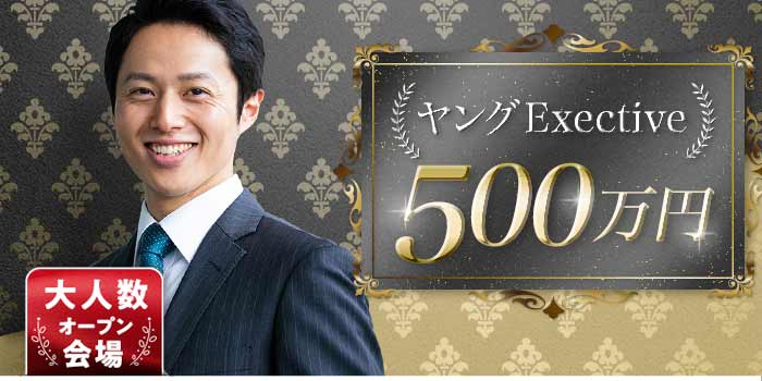 ヤングExective500A