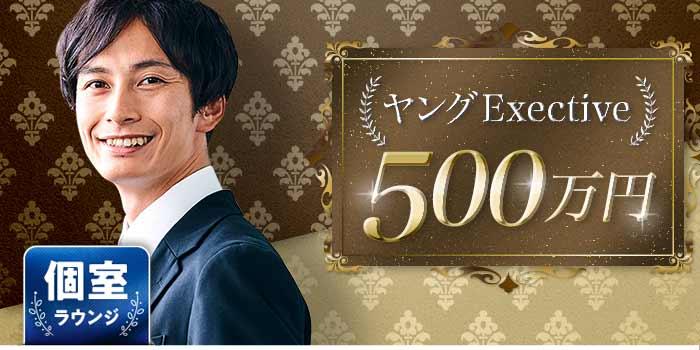ヤングExective500B